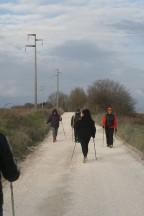 Corso base Poliferentum GrotteSStefano 01-03-2015 (31)