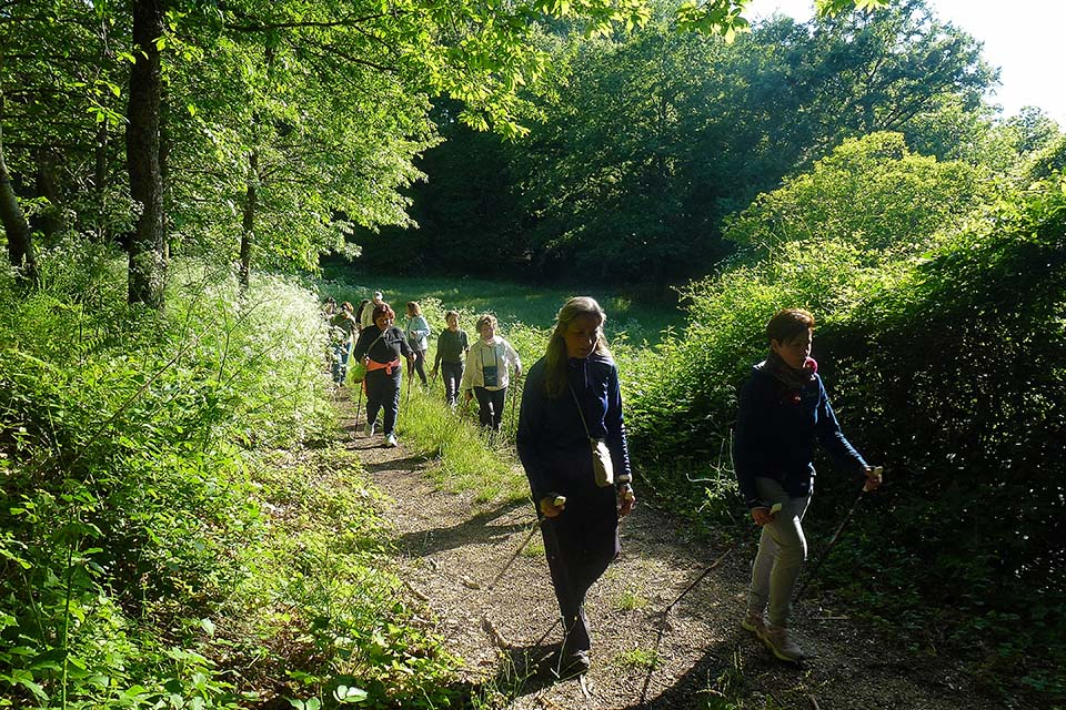 NordicWalkingLaTorreViterbo-28052015 (4)
