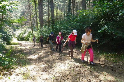 NordicWalkingLaTorre-Viterbo-27062015 (20)