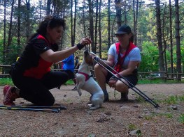 NordicWalkingLaTorreViterbo-18072015 (6)