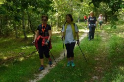 NordicWalkingLaTorreViterbo-28092015 (5)