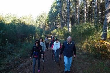 NordicWalkingLaTorre-Viterbo 09112015 (5)
