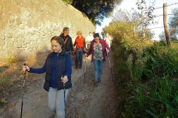 NordicWalkingLaTorre-Viterbo-18-11-2015 (3)