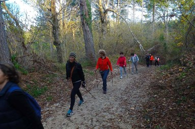 NordicWalkingLaTorre-Viterbo-27112015 (2)