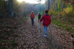 NordicWalkingLaTorre-Viterbo-27112015 (3)