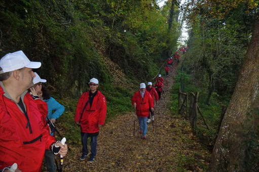 NordicWalkingLaTorre-Viterbo-OrvietoADO-15112015 (35)